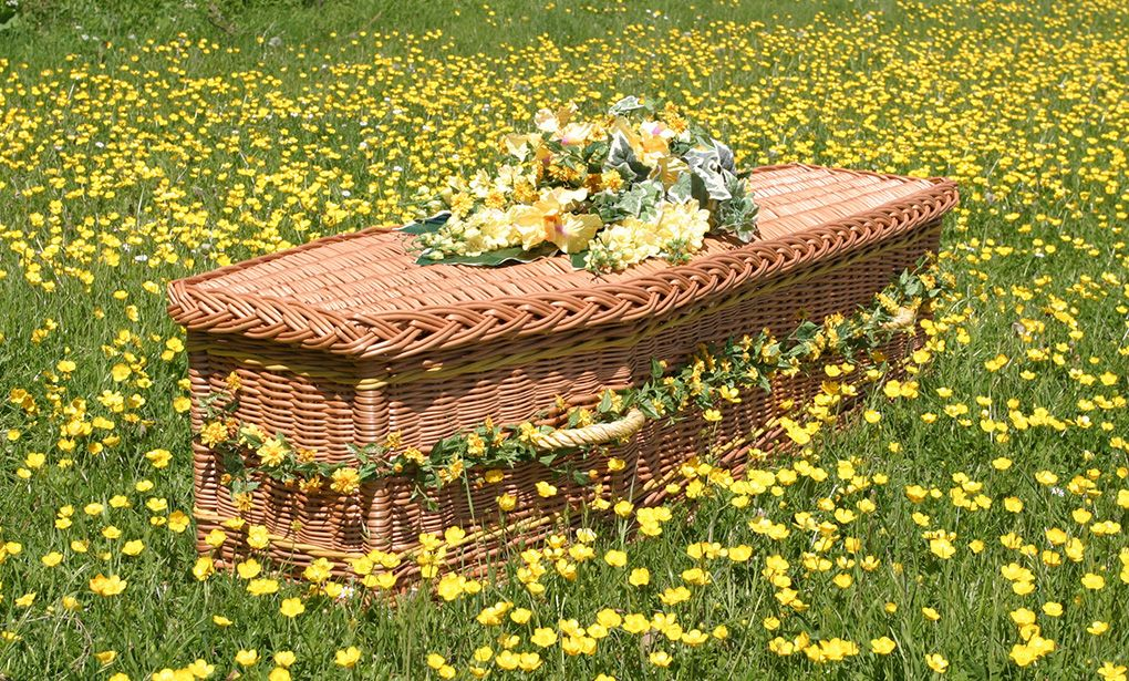 Environmentally friendly willow coffins wicker willow