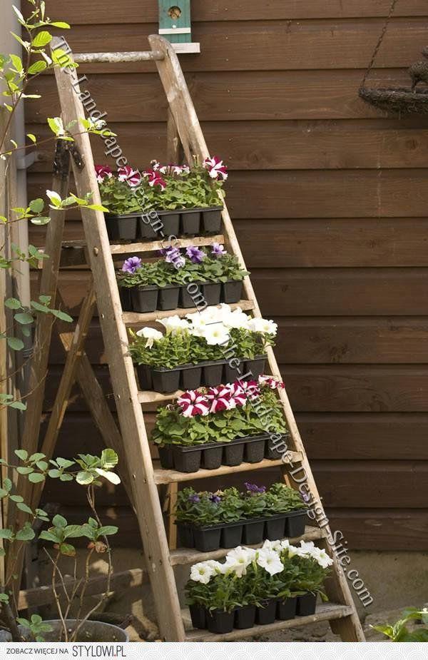 Drugie Zycie Drabiny Kwitnaca Drabina Stojak Na Kwia Garden Garden Planters Container Gardening