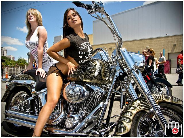 Harley Davidson Choppers For Sale Toronto
