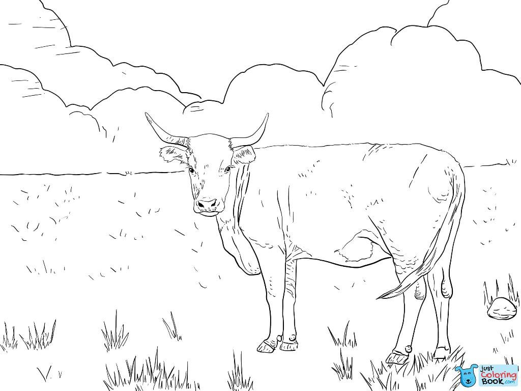 Horned Hereford Cow Coloring Page Free Printable Coloring In Horned Hereford Cow Coloring Pages Cow Coloring Pages Hereford Cows Animal Coloring Pages