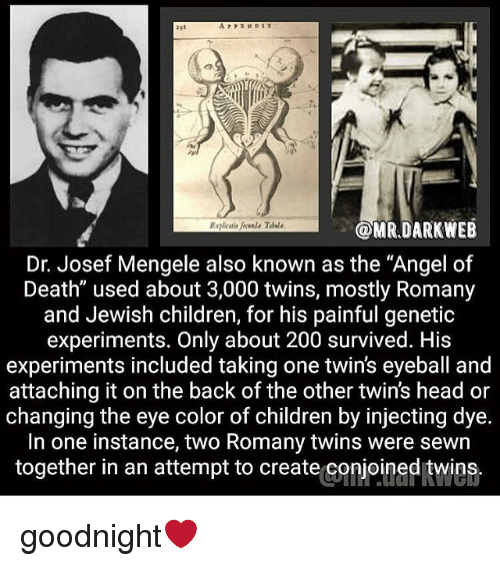 essay about josef mengele Who is josef mengele mengele was born in 1911, in the village of gunzburg in germany's bavarian region he was the eldest of three children, and the son of a successful but distant factory owner and a strict catholic matriarchal mother he was a physician in the concentration camp auschwitz and the.