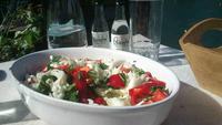 My Big Fat Greek Recipe List: 50 Healthy Greek Yogurt Recipes   Be Well Philly   Savor the Flavor   Scoop.it