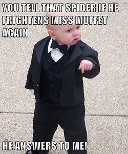 Can you picture eight cinder blocks tied to each leg?  #missmuffet #godfatherbaby #gangsterbaby #mememonday #spider