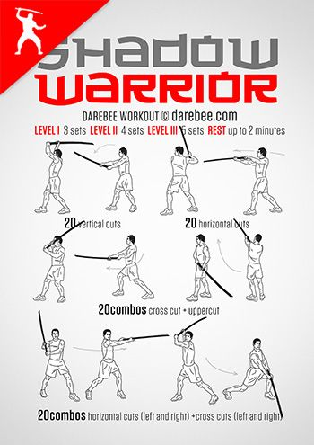 shadow warrior workout  warrior workout martial arts