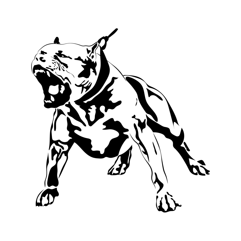 Pin On Animal