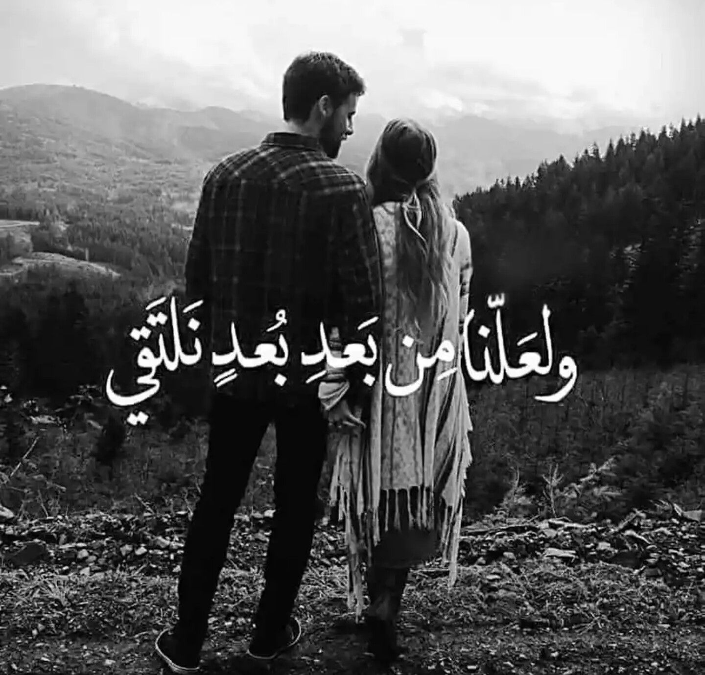 Pin By 1 646 269 0597 On ليتها تقرأ Love Husband Quotes Funny Arabic Quotes Love Words