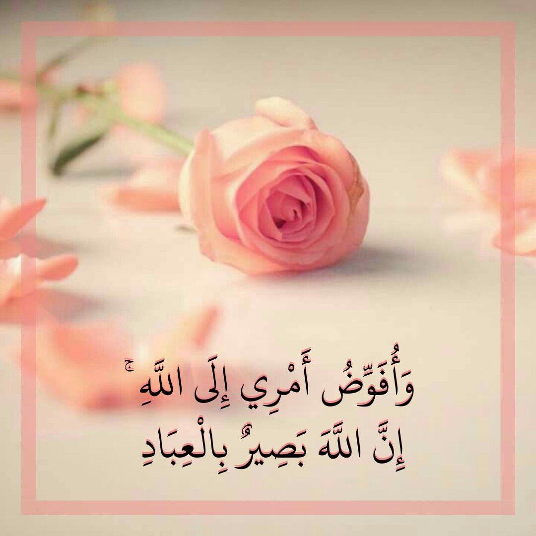 قرآن كريم آيه وافوض أمري الى الله Islamic Quotes Wallpaper Quran Quotes Islamic Quotes