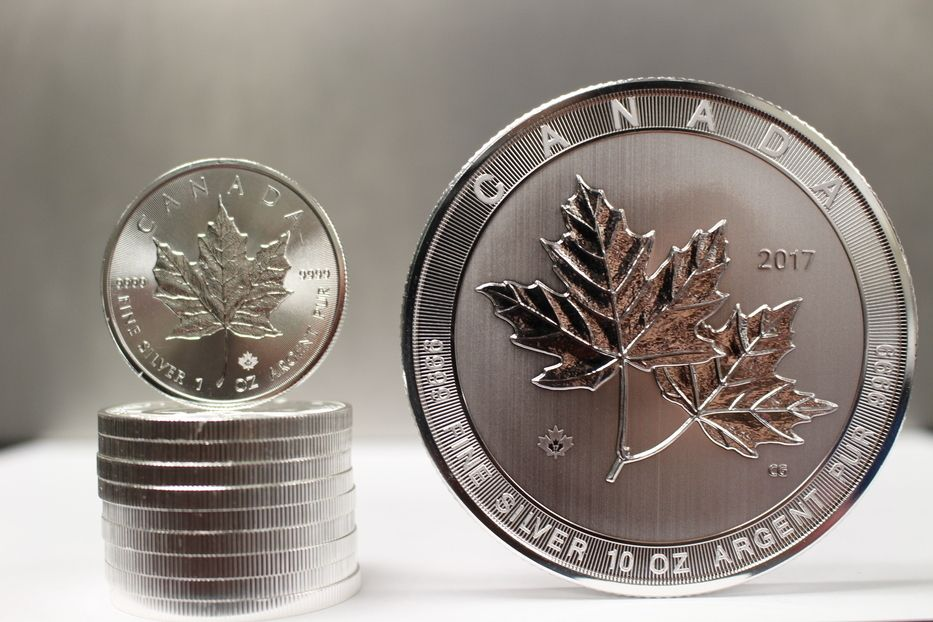 1 Ten Ounce Silver Canadian Maple Leaf Versus 10 One Ounce Canadian Maple Leaf Silver Coins Gold And Silver Coins Rare Coins Worth Money Silver Bullion Coins