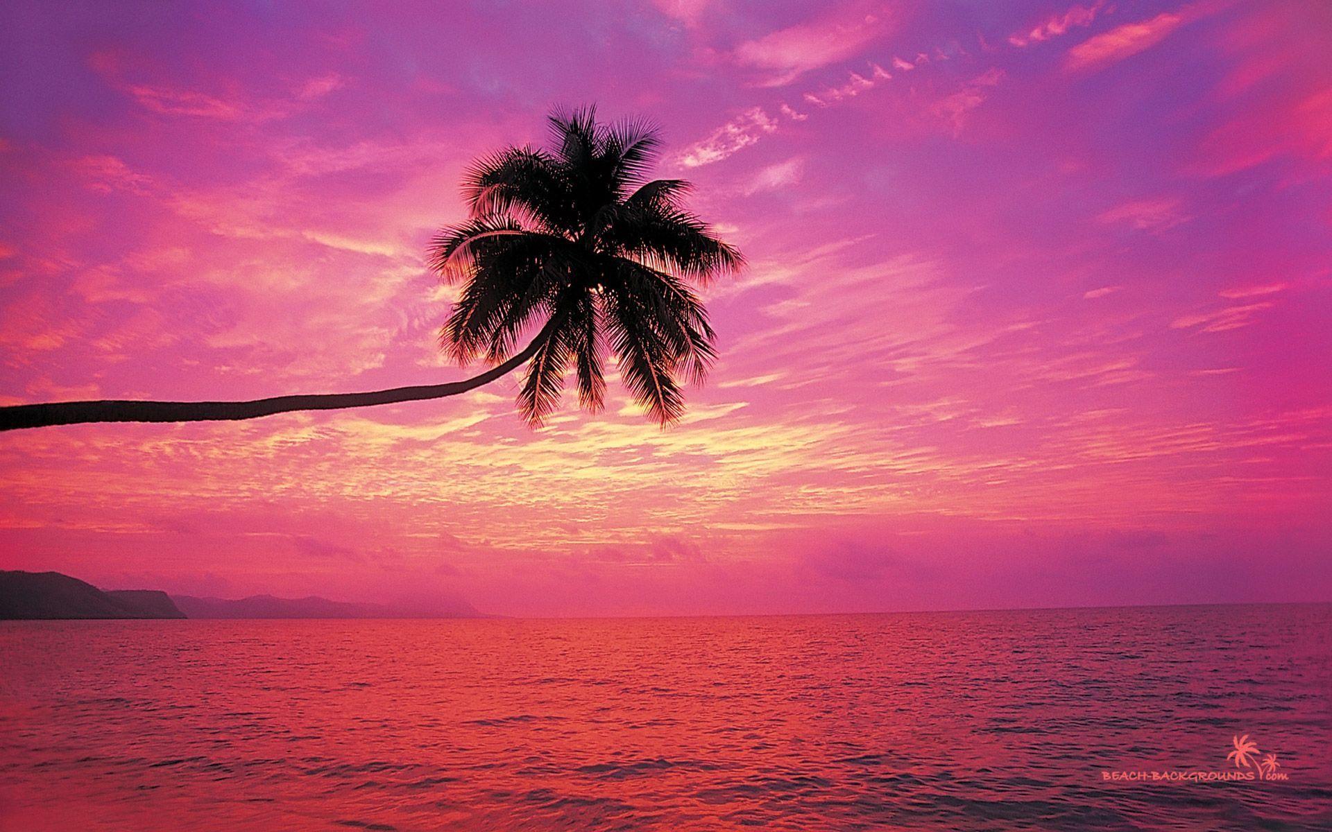 Sunset Beach Backgrounds Beach Wallpaper Beach Background Sunset Wallpaper