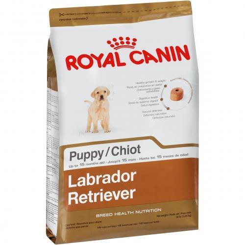 Royal Canin Labrador Retriever Puppy Dry Dog Food Labrador Puppy Labrador Retriever Labrador Retriever Puppies