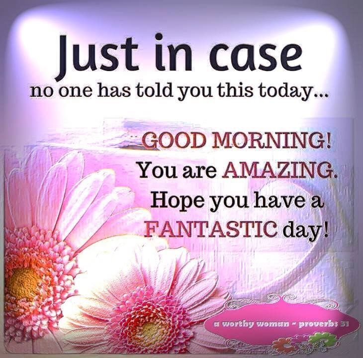 Good Morning You Are Amazing Good Day Quotes Good Morning