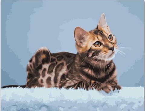 bengal cat  animals paintnumbers in 2020  canvas art