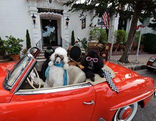 Pet Friendly Doris Day S Hotel Carmel California Retreats Artist Works By