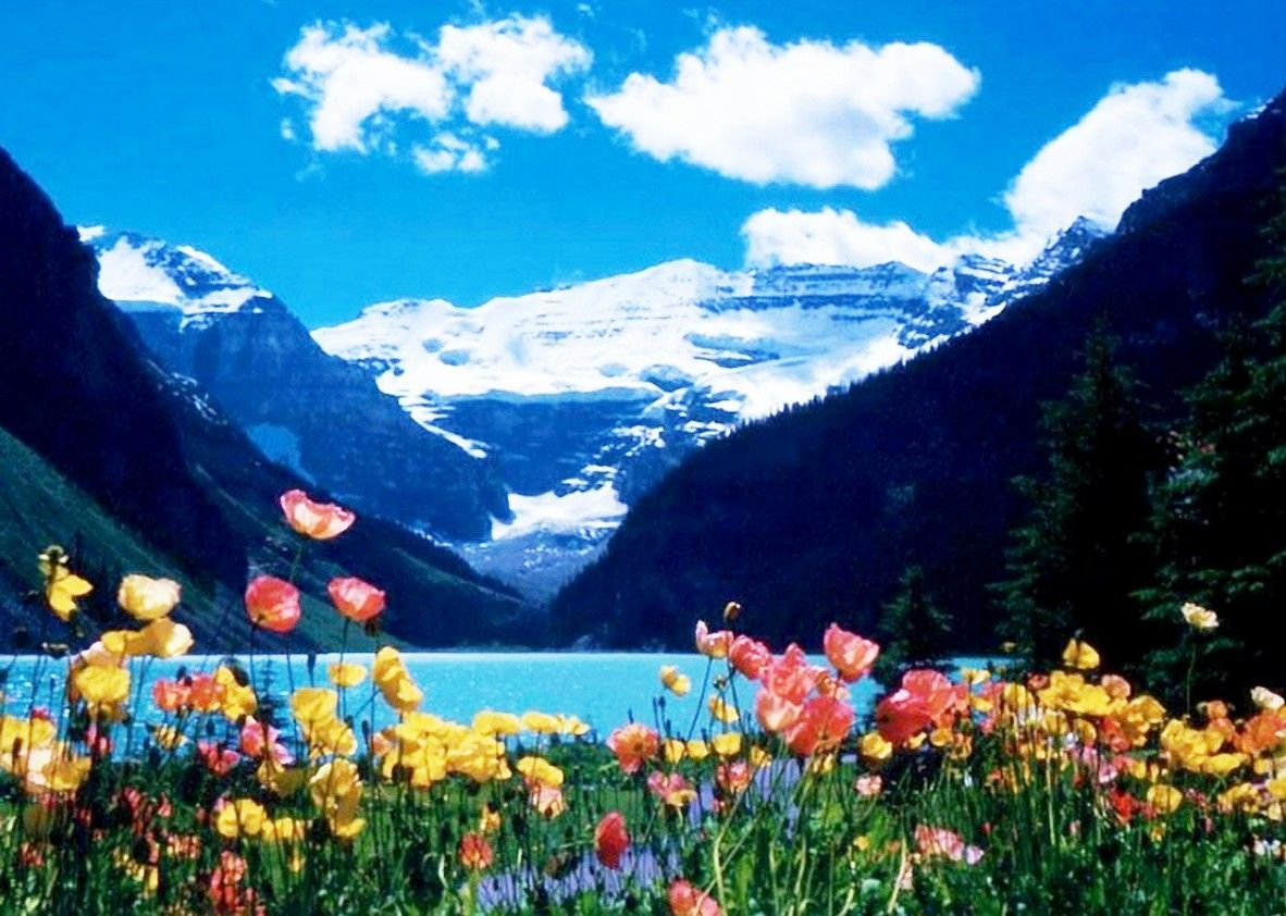Fondo Escritorio Bonitas Montañas Nevadas: Bellos Paisajes De Primavera - Buscar Con Google