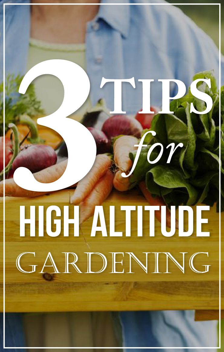 High Altitude Gardening Got You Down? Here Are Three Tips (and Some  Resources,