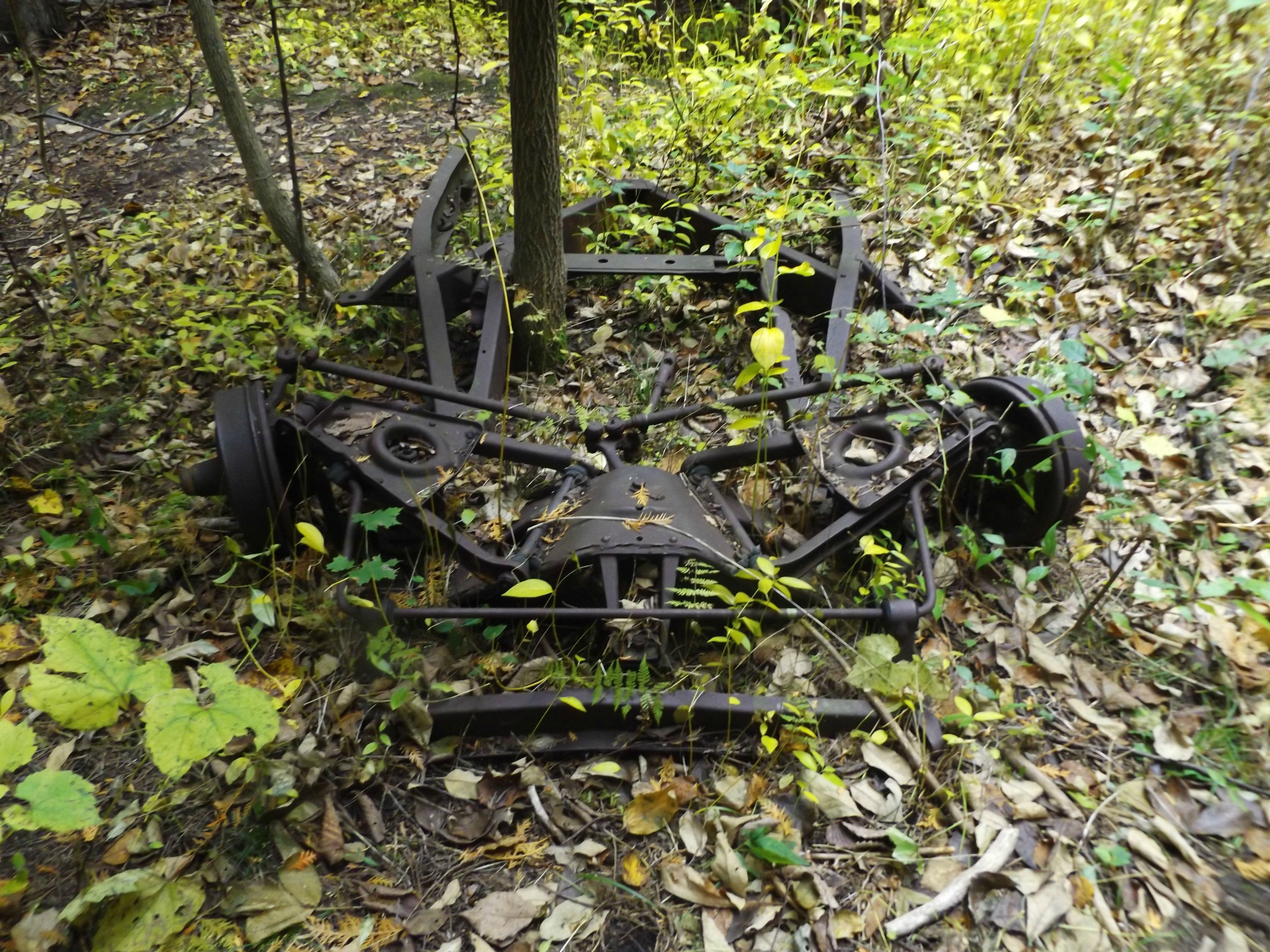 Old car remains in the woods Toronto Canada [2764x2073] [OC]