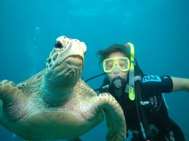 Best Free Diving Locations Across The World