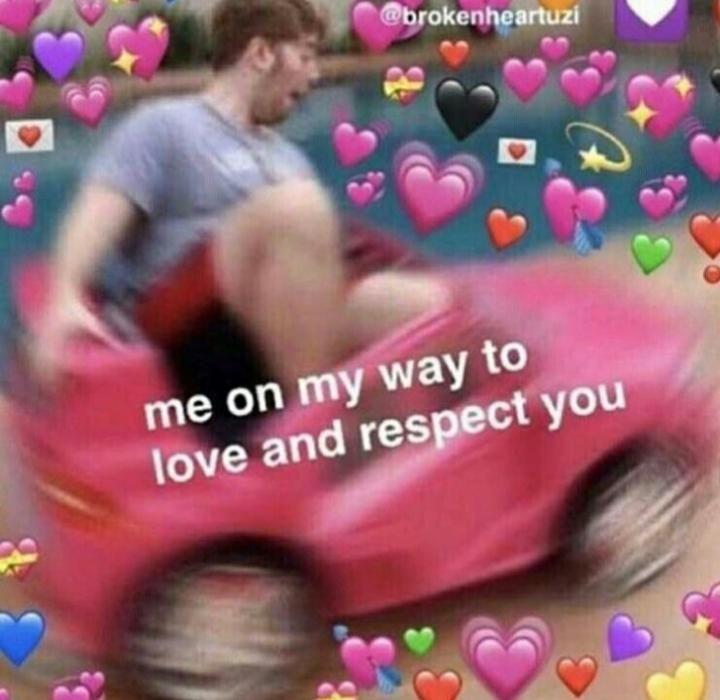 Thank You Shane Cute Love Memes Love Memes Cute Memes