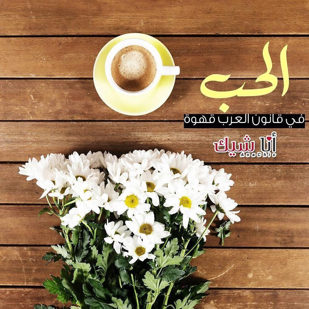 الحب في قانون العرب قهوة متجر أناشيك قهوة كوفي سعادة كابتشينو قهوة ساخنة قهوة سوداء قهوة تركية مساء الخير السعا Instagram Posts Latte Instagram