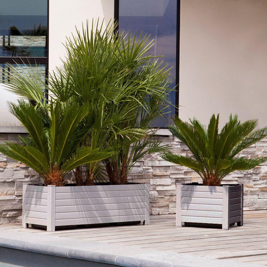 un air de vacances toute l 39 ann e avec des palmiers jardini re en pvc grosfillex jardin. Black Bedroom Furniture Sets. Home Design Ideas