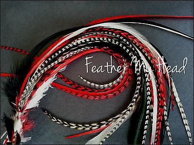 3499 watch now httpvizdujustgoodvigitempt feather hair extensions do it yourself diy kit 16 pc thin feathers long red black white enchanted collection rock star solutioingenieria Choice Image