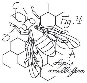 Miniature Menagerie Honeybee Diagram design (UTH6531) from UrbanThreads.com