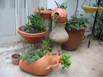 Tinajas Con Plantas Poned Fotos Foro De Infojardin Plantas En Maceta Al Aire Libre Jardineria En Macetas Ideas De Jardineria