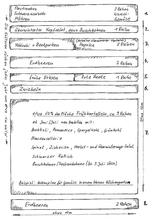 Konkreter Gemuse Anbauplan Skizze Reihenmischkultur Gemusegarten Planer Anbau Gemusegarten Anlegen