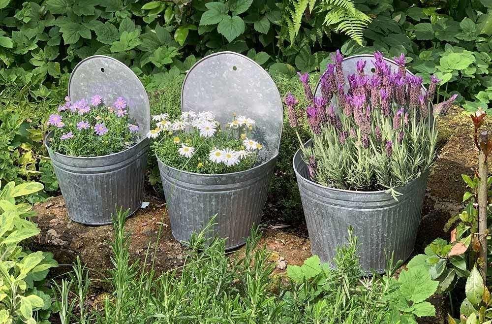 3 Schone Wandpflanzgefasse Aus Zink In Verschiedenen Grossen Ideal Geeignet Als Blumen Oder Pflanztopf Oder Einfach Als Sc Pflanzen Blumentopf Wand Blumentopf