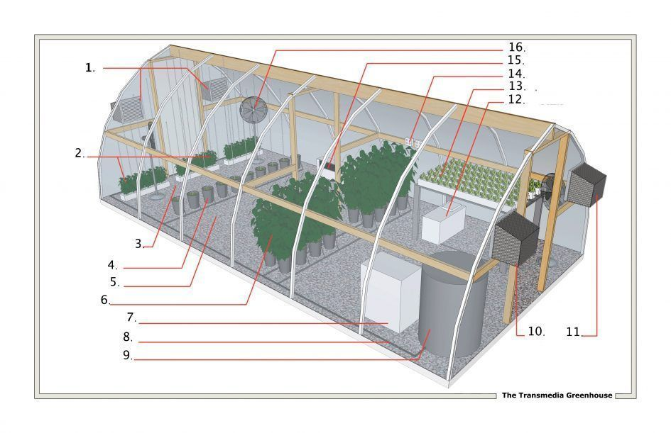 Apartments Green House Floor Plans Greenhouse Plangreenhouse Designs Plan Of A Trend Home Design And Decor Trans Greenhouse Plans Small Greenhouse Greenhouse