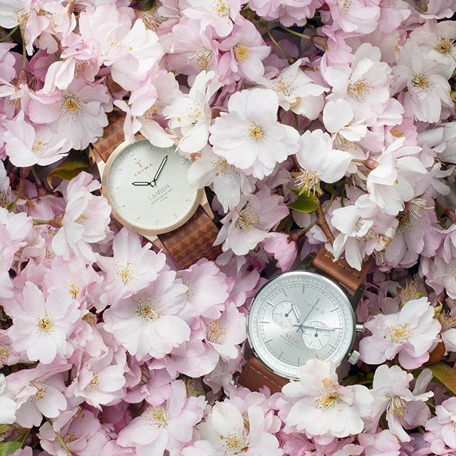 Hazel Nevil and Ivory Lansen in a bed of cherry blossoms.. Thank you @adamlinner for this beautiful picture!