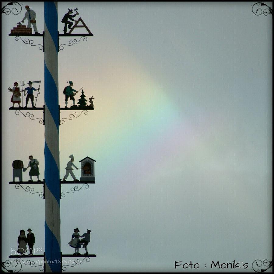 Rainbow & maytree II by monikakramarska