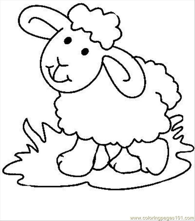 pages sheep mammals sheeps printable