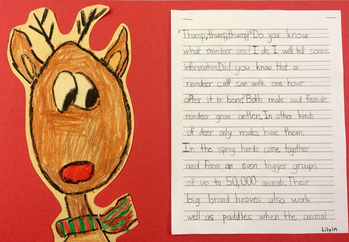 Expository Writing Second Grade