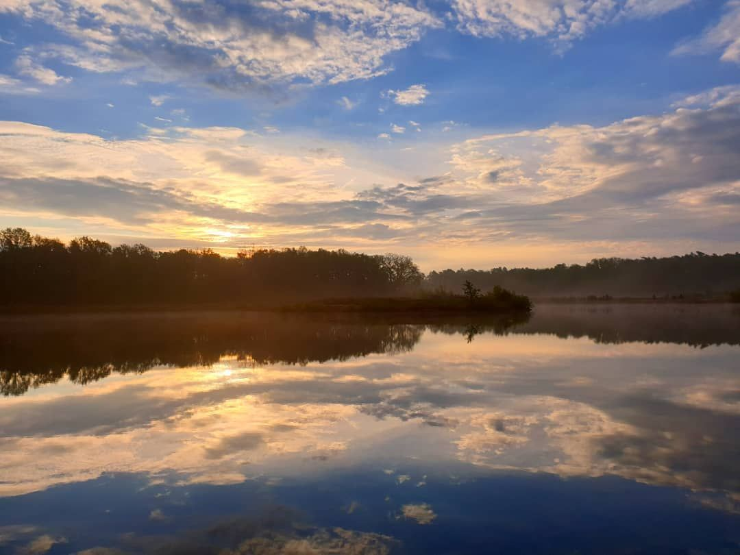 Guten Morgen Nature Naturepics Naturephotography