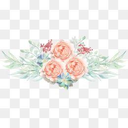 Aquarela De Flores Aquarela De Flores Flores Cor De