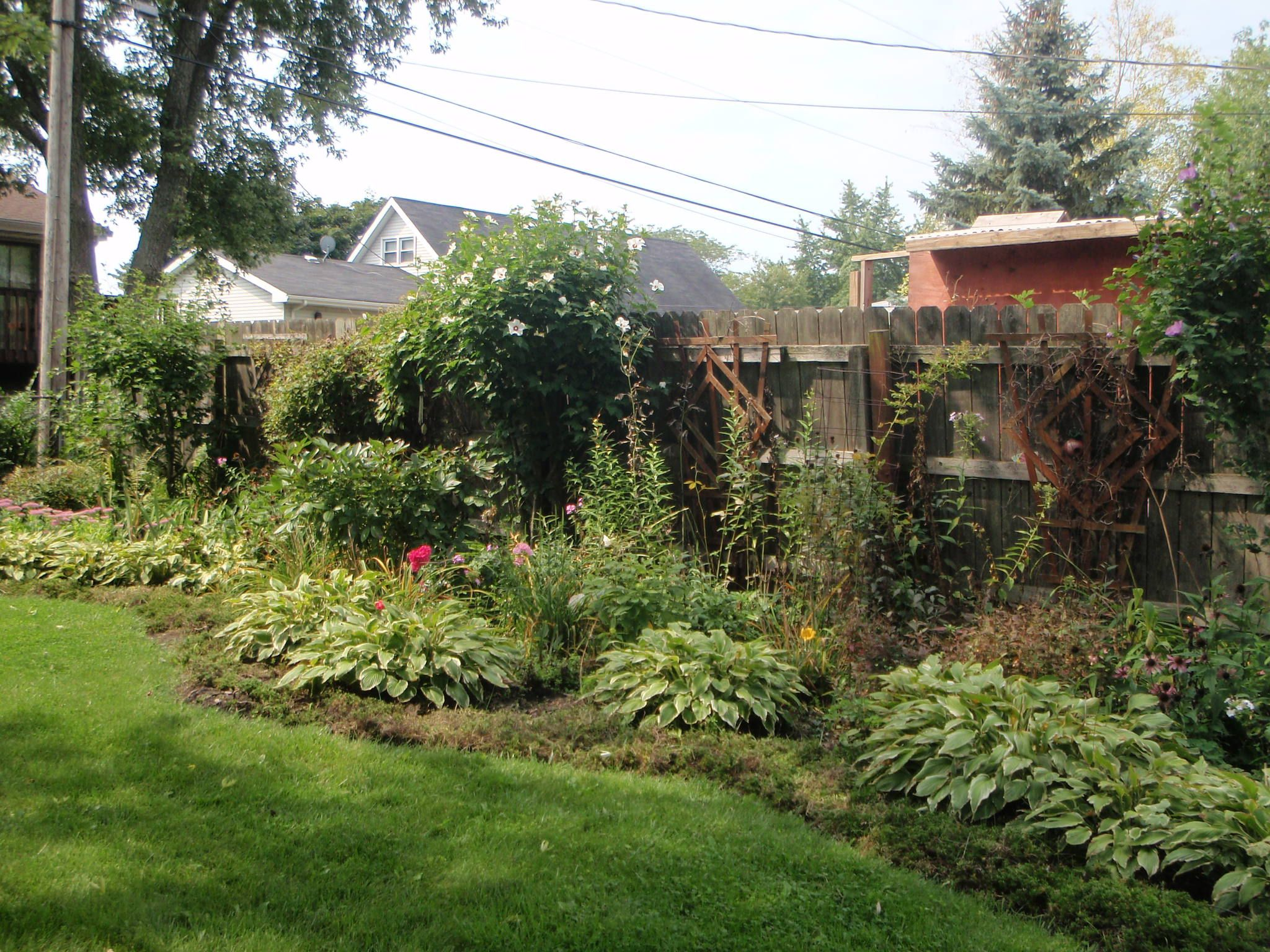 Fertilize A Lawn Jerry Baker Author Of The Impatient Gardener Suggests Mixin Outdoor Gardens Landscaping Backyard Garden Landscape Modern Garden Landscaping