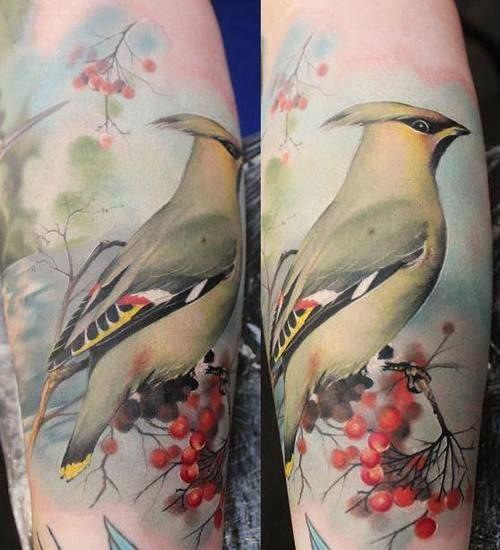 So Pretty Realistic Bird Tattoo Bird Tattoo Sleeves Birds Tattoo