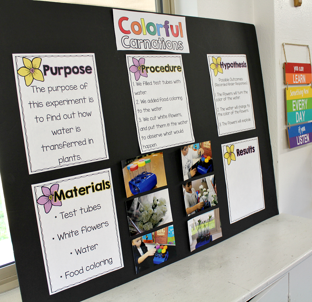 Science Design Project: Kids Science Fair Projects, Science