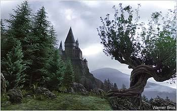 The Whomping Willow Has A Secret Passage Leading From The Hogwarts Grounds To The Shrieki Harry Potter Background Harry Potter Aesthetic Harry Potter Wallpaper