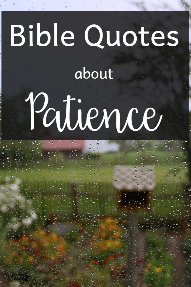 I'm spending the next 31 days writing about Bible Quotes. In Bible quotes About Patience, the light bulbs were firing as I was writing this!
