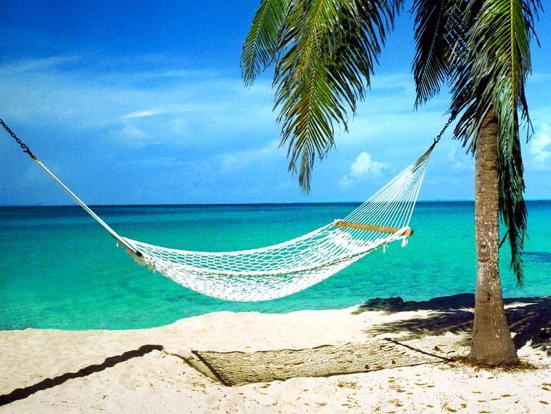 Beach + hammock + sunset + cold beverage | When i start to ...