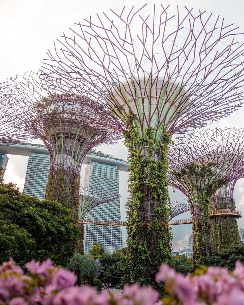 Gardens By The Bay Singapore Nearest Mrt Station