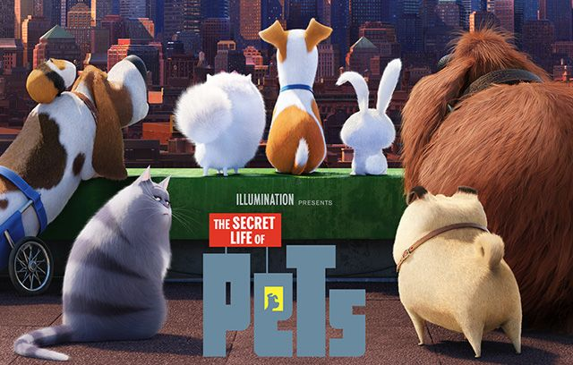 The Secret Life Of Pets This Is A Story Started With A Loveable Dog Thinking That The Relationship Between Himsel Secret Life Of Pets Pets Movie Secret Life