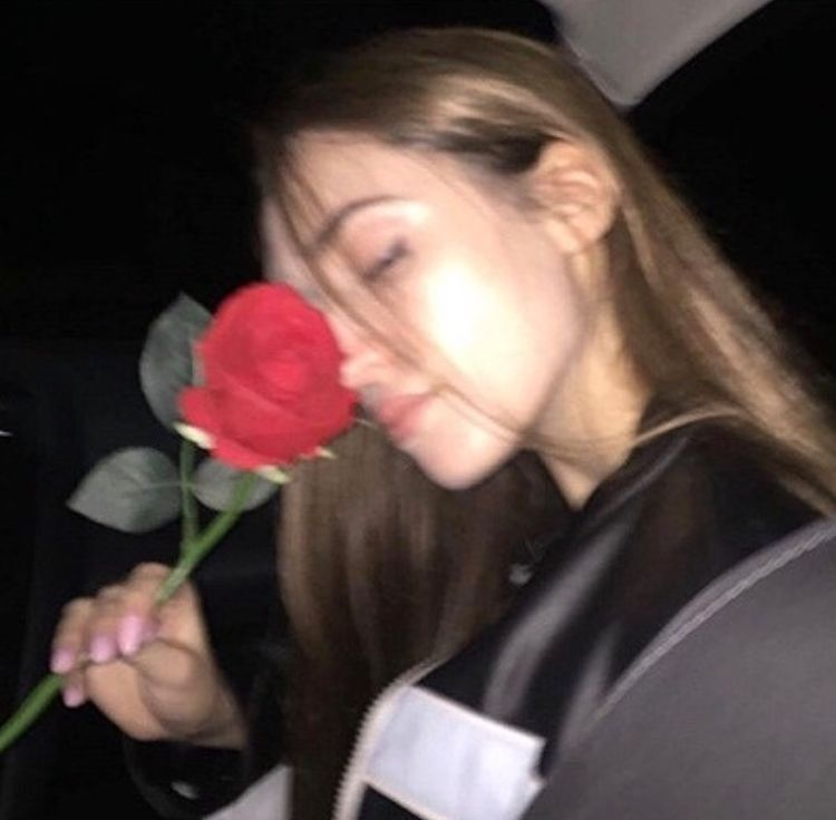 Pin By 𝘮𝘪𝘮𝘪 On ʟᴏᴠᴇʟy Pinterest Aesthetic Roses