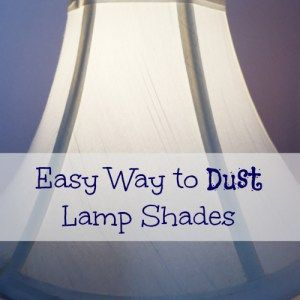 Cleaning Lampshades Alluring Cleaning Tip Tuesday Removing Hard Water Stains  Hard Water Stains Design Inspiration