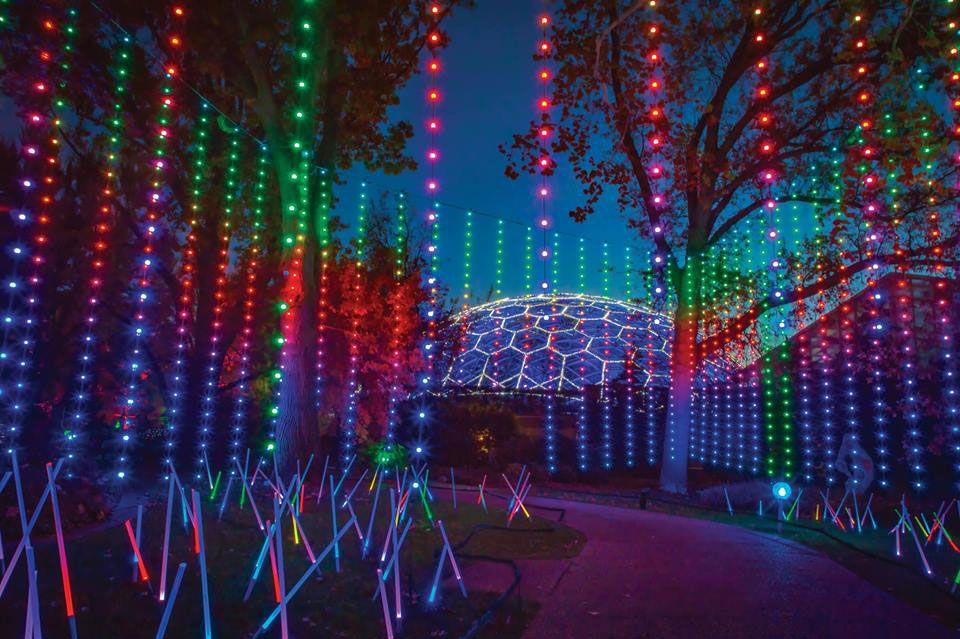 Lights At Botanical Gardens St Louis