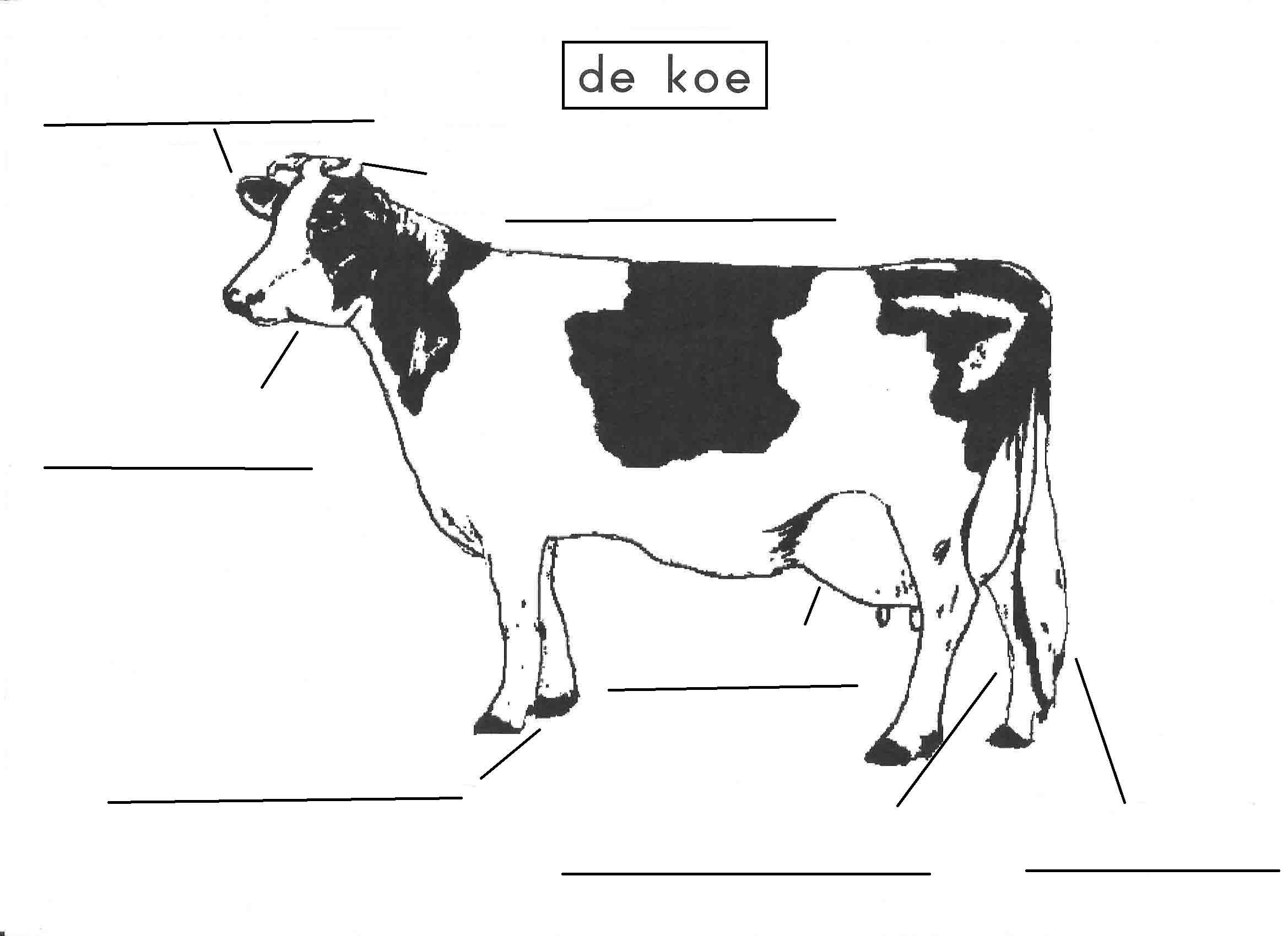 Pin Van Krista Vanderelst Op Thema Koe Kleuters Cow Theme Preschool Vaches Theme Maternelle Boerderijdieren Boerderij Thema Koe