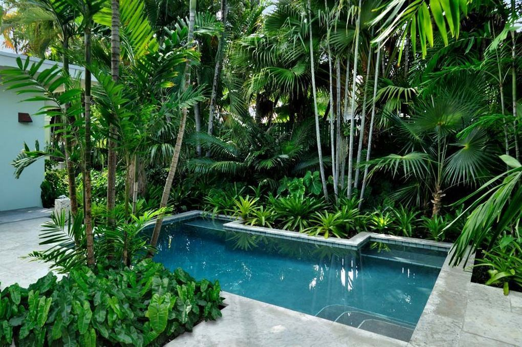 57 Pool Landscaping Ideas Tropical Small Backyards Landscaping Around Pool Tropical Pool Landscaping Tropical Landscape Design