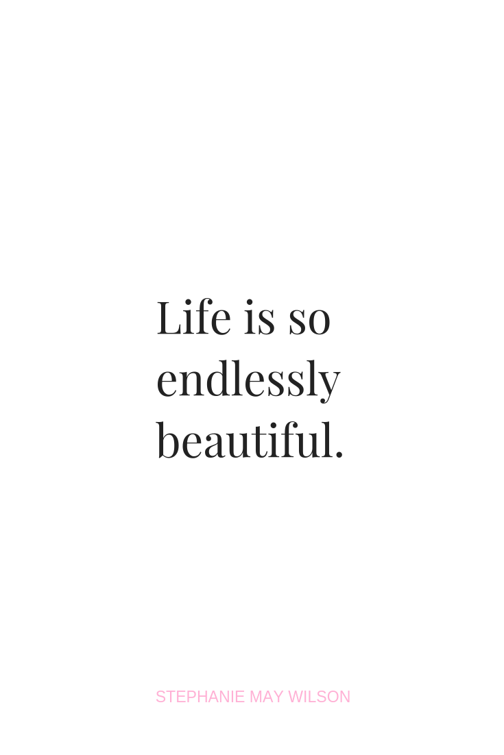 Life is so endlessly beautiful #stephaniemaywilson #quotes